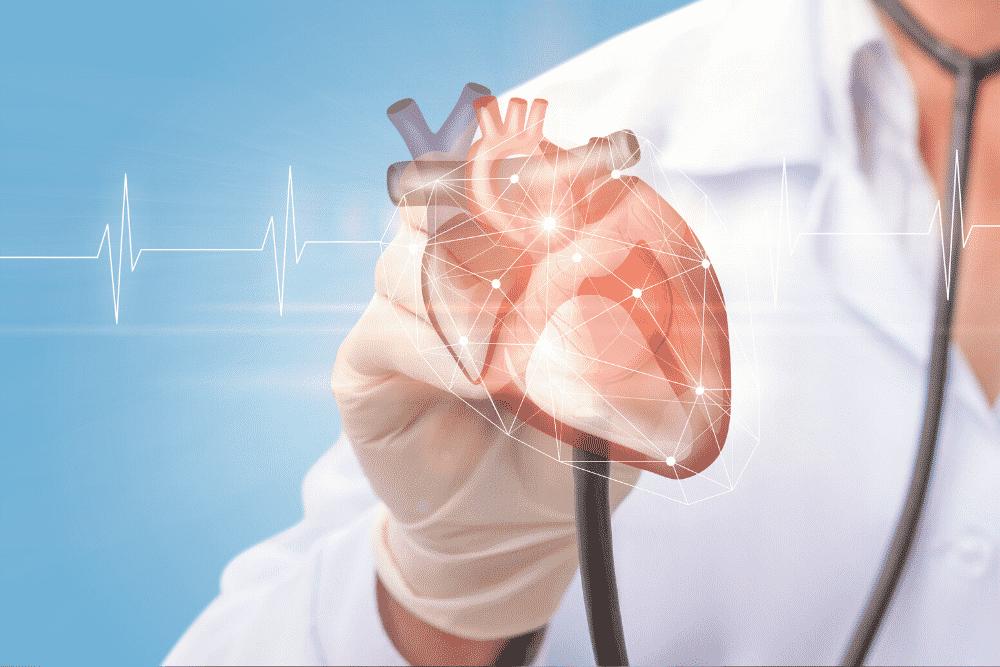 A saúde do intestino influencia no coração?